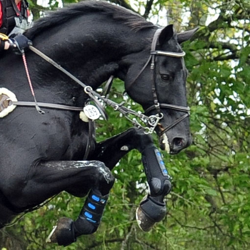 Product Review: Premier Equine Air Cooled Eventing Boots  Everything