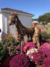 A Corn Husk horse at Fair Hill.