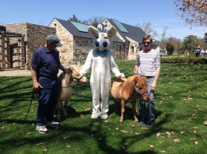 Dad, Mom and Rocky and Toppers got to meet the Easter Bunny!