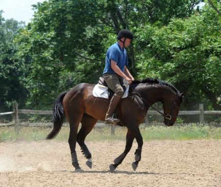 Stretching in canter. June 18.