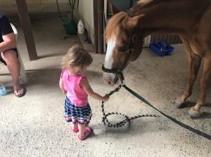 Ava meets Lad.