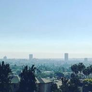 L.A. Haze