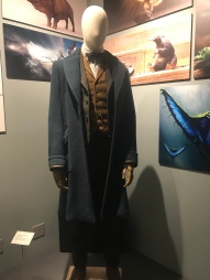 Fantastic Beasts costume