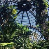 Botanical Building in Balboa Park.