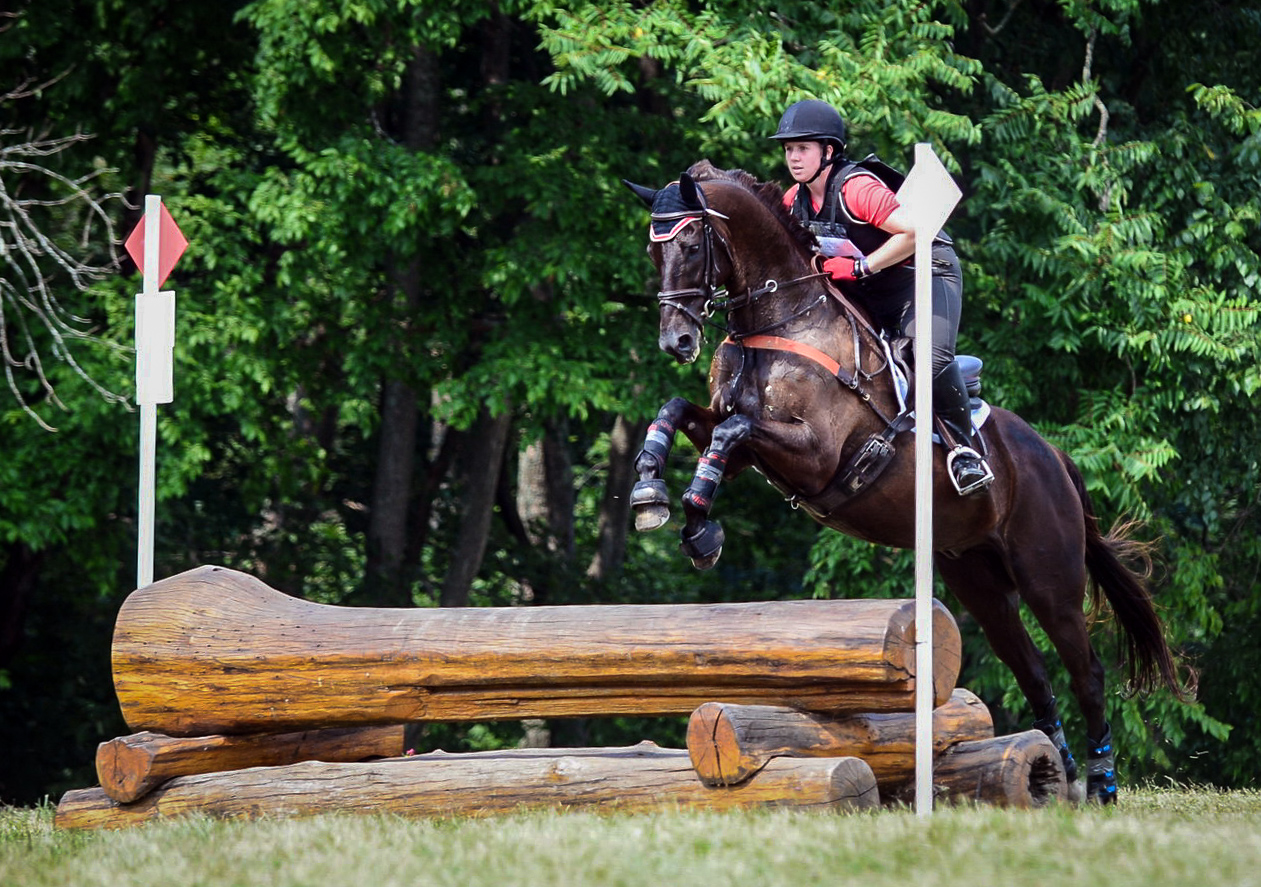 picture perfect at maryland horse trials ii  u2013 everything