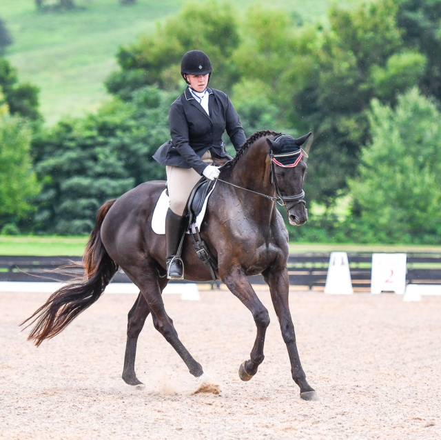 51_Lindsay Berreth_CDCTA Dressage_01.56PM_#310_Cropped