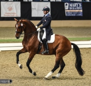 Steffen Peters and Suppenkasper demonstrate a perfect pirouette at the AWCDF.