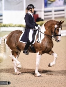 Jim Koford and the amazing Adiah HP wowed the crowds at Dressage and Devon.